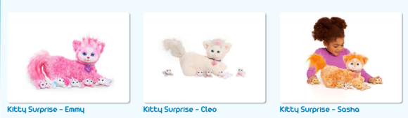 kitty surprise banner photo